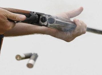Qanunsuz silah saxlayanlara qarşı əməliyyatlar davam edir