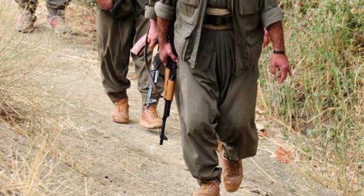 6 PKK terrorists 'neutralized' in SE Turkey operation
