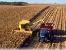 عکس: اقلام کشاورزی در صدر فهرست واردات ایران در هفت ماه سال جاری / اخبار تجاری و اقتصادی