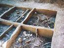 صور: حفريات أثرية مشتركة لعلماء أذربيجان وفرنسا في محافظة طاووس الأذربيجانية / مجتمع
