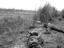 عکس: نقض آتش بس نیروهای ارمنی؛ 5 سرباز آذربایجانی کشته شد / سیاست