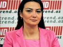 عکس: نماینده پارلمان آذربایجان : دیدار با نمایندگان پارلمان ترکیه سازنده بوده است / قره باغ کوهستانی