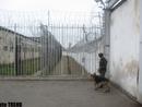 عکس: تحویل 15 زنداني زندانهاي آذربايجان به ايران در آینده نزدیک / اجتماعی