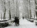 عکس: ۸ استان ایران درگیر برف و کولاک / اجتماعی