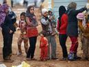عکس:   کمپین کمک به پناهندگان و آوارگان سوری در جمهوری آذربایجان راه اندازی شد / سیاست