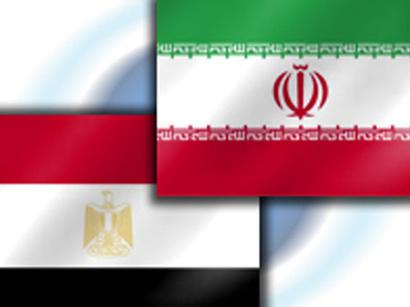 صور: لقاء وزيري خارجية مصر و ايران / ايران