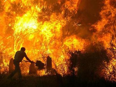 صور: 22 حريقا في الغابات تندلع حاليا في هانتي-مانسيسك / روسيا