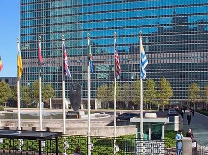 عکس: سازمان ملل متحد مشتاق همکاری با تهران / ایران