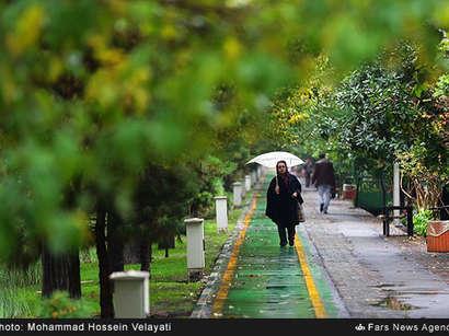 عکس: باران پاییزی در تهران  / تصویری