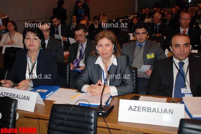 Vyanada Azərbaycan-Avstriya parlamentlərarası əməkdaşlıq məsələləri müzakirə olunub – Bahar Muradova