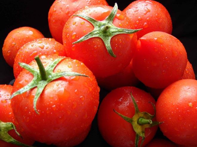 Azərbaycan pomidor ixracını artırıb
