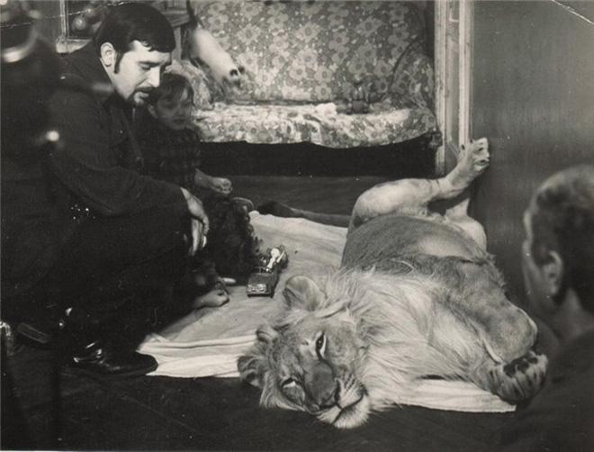 Кинг I и Кинг II, или Трагедия семьи Берберовых - от славы к кровавой развязке (фотосессия)
