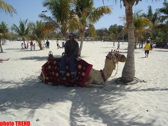 В Азербайджанском Дубае : автоши, адреналин, россияне… (фотосессия, часть четвертая)