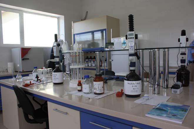 Azersun Holding: Azerbaijan produces competitive salt (PHOTOS)