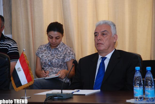 Azərbaycan və Misir karbohidrogenlərin kəşfiyyatı və hasilatı sahəsində əməkdaşlığı nəzərdən keçirirlər (FOTO)