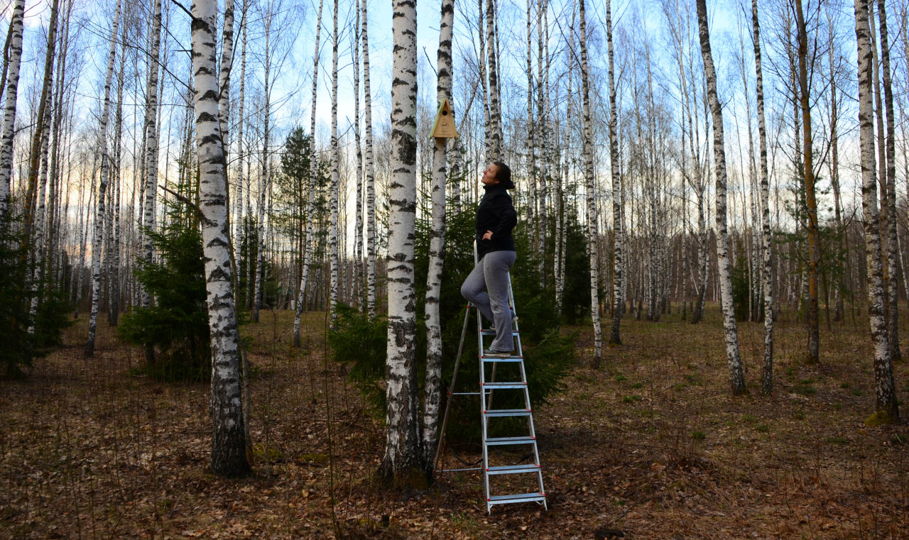 IDEA quş sığınacaqları Belarusda quraşdırılıb (FOTO)