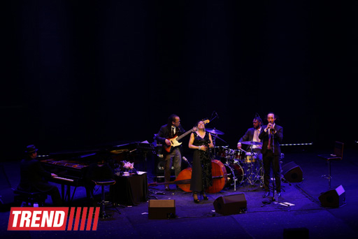 a narrative of my experience of attending the dee dee bridgewater concert