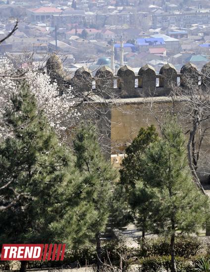 Tarixə təkrar baxış – Dərbənd qalası (FOTO)