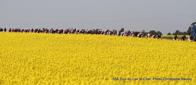 Azərbaycanın velosiped komandasının üzvü Fransada təltif edildi (FOTO)