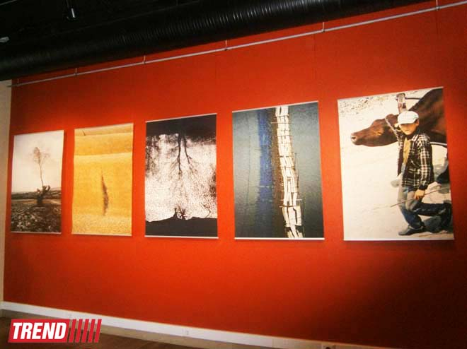 В Баку открылась выставка молдавского фотохудожника Михая Потырнике (ФОТО)