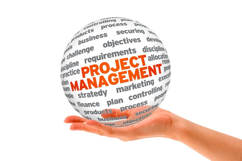 International Business Management with Project Management MSc