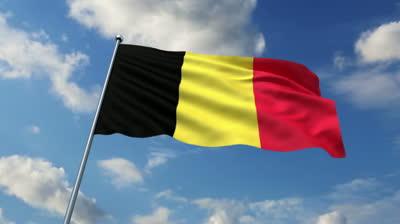 Belçika XİN Suriya məsələsinə qarışdı: Vəziyyətin hərbi yolla həlli yoxdur