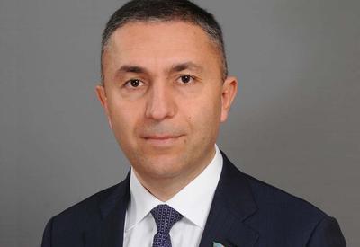 MP: Ilham Aliyev's invitation to D-8 summit – clear example of Azerbaijan-Turkey brotherhood