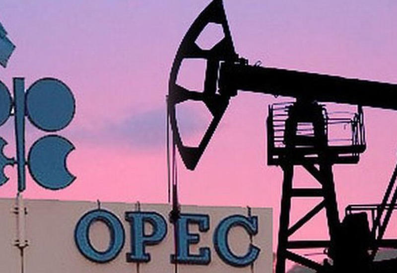 "Russia stands for raising Azerbaijan's status in ""Gas OPEC"" (Exclusive)"
