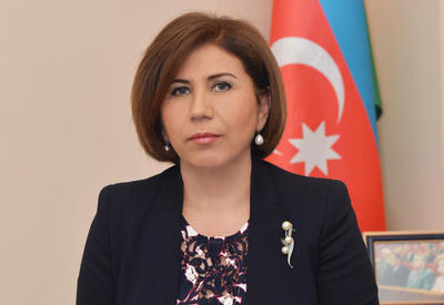 Вице-спикер: Курс Гейдара Алиева лежит в основе всех достижений Азербайджана