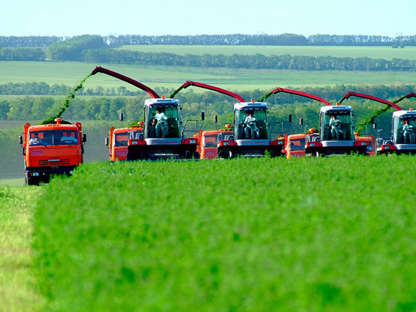 В Азербайджане намерены повысить молодежную занятость в аграрной сфере