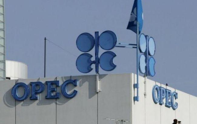 OPEC cuts 2019 oil demand growth forecast, sees more