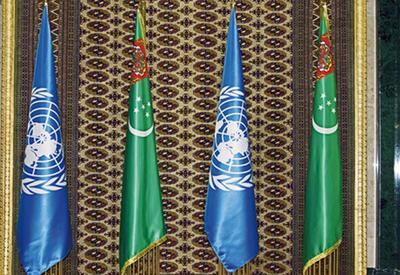 Туркменистан обсудил с ООН вопросы безгражданства