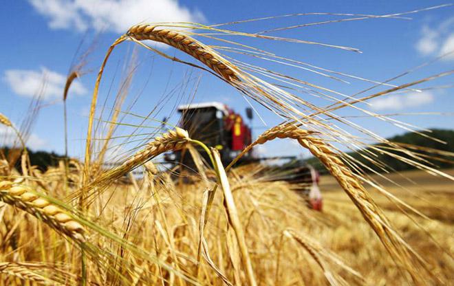 ЕС поддержит субсидирование сельского хозяйства в Азербайджане
