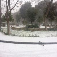 Bakü'den kar manzaraları (Fotoğraf)