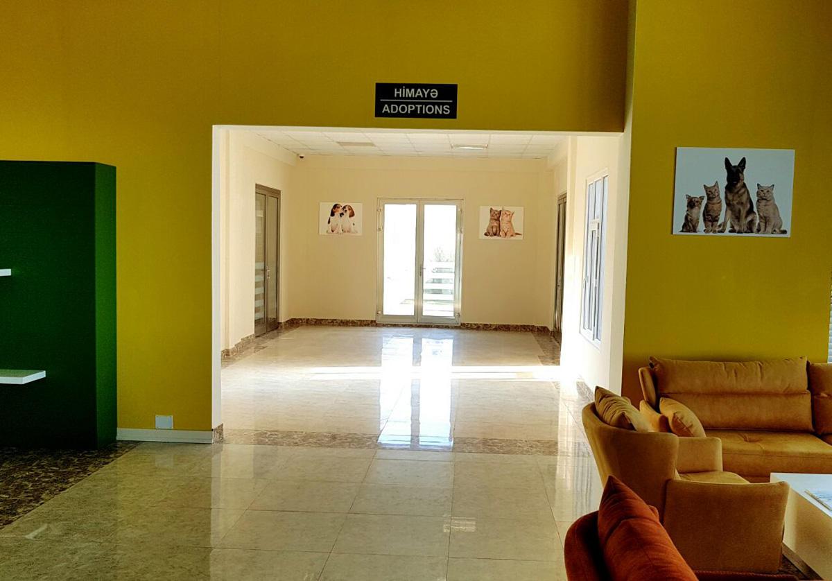 В Баку стал официально функционировать Центр спасения и приют для бездомных животных (ФОТО)