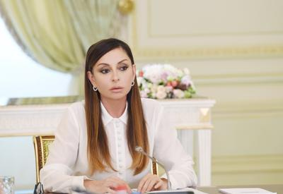 Mehriban Aliyeva's appointment as Azerbaijan's First VP was beginning of new chapter in welfare of Azerbaijani people: Rob Sobhani