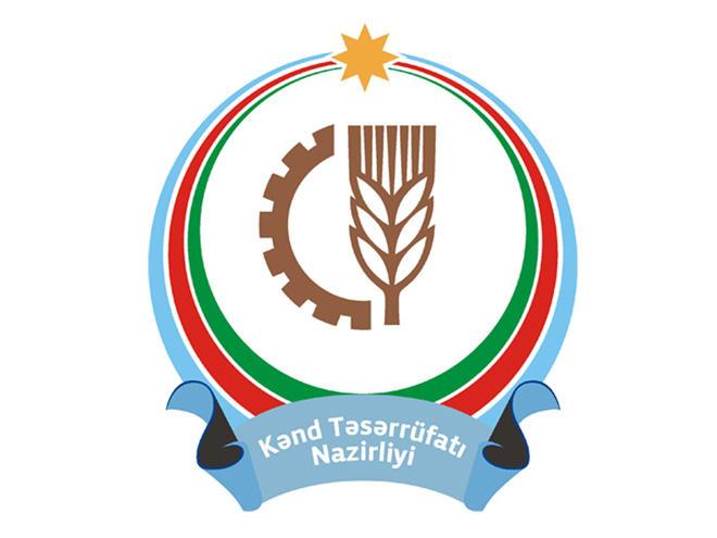 Минсельхоз Азербайджана: За шесть месяцев этого года в отрасли зафиксирован рост в 13 %