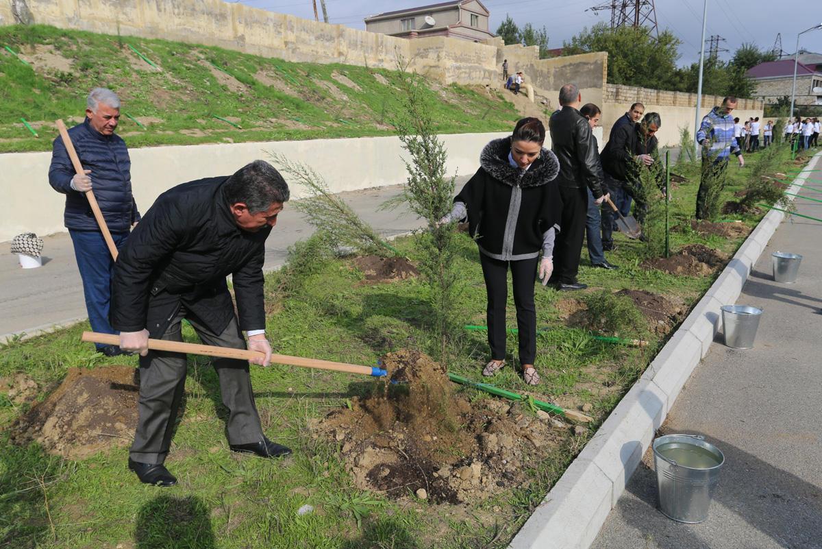 Binəqədi rayonunda 2500-dən çox ağac əkilib (FOTO)