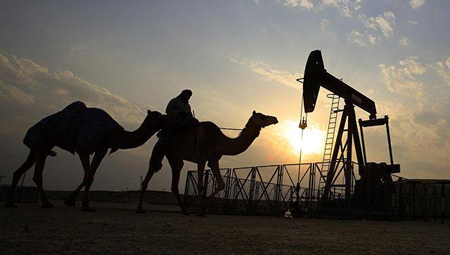 BƏƏ Energetika naziri dünya neft bazarı haqqında danışdı